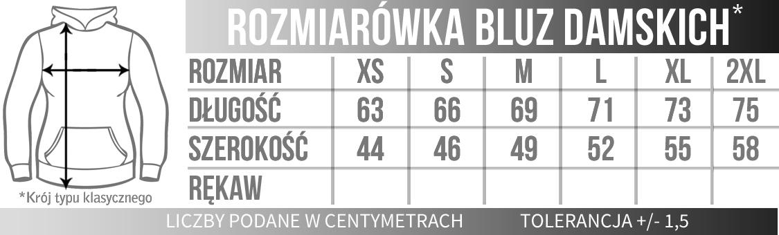 Bluza Damska kaptur_2.jpg